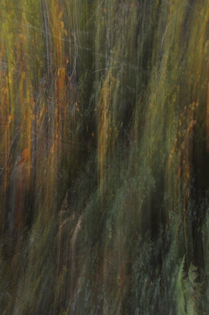 otoño_abstracto-Mikel_Maidagan