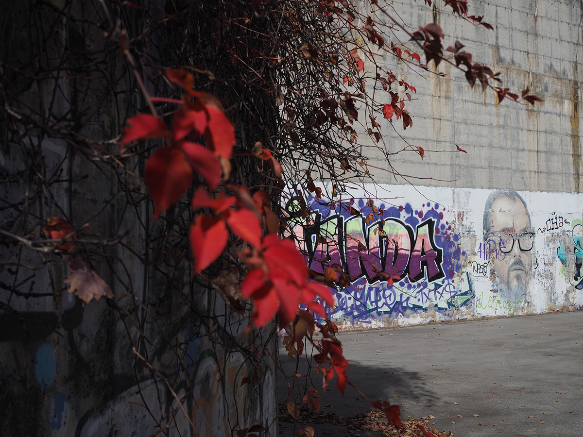 Oier_Larrañaga-Urban_graffiti