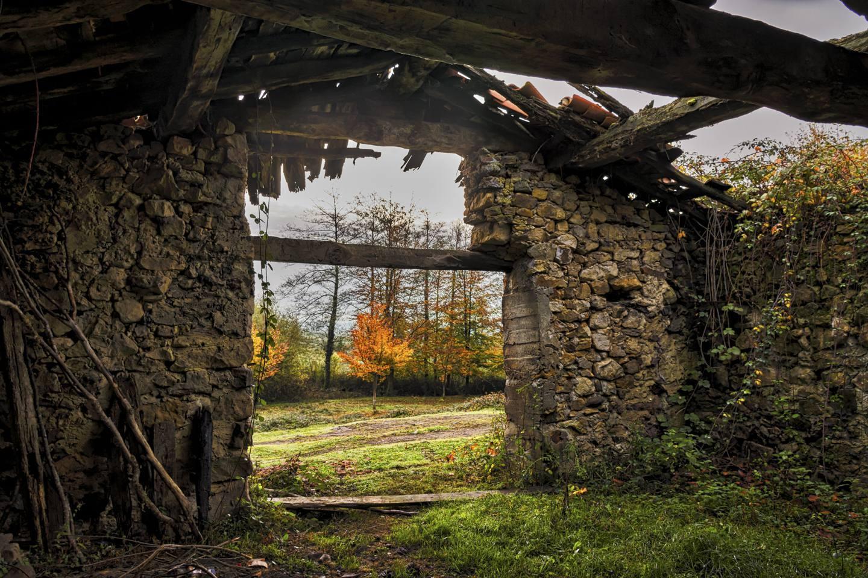 El otoño está fuera / Sebas Lozano Fuentes